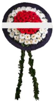mozele çiçeği  Van hediye sevgilime hediye çiçek