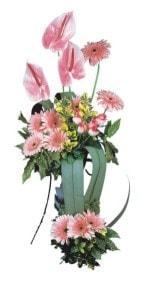 Van güvenli kaliteli hızlı çiçek  Pembe Antoryum Harikalar Rüyasi