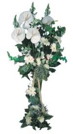 Van çiçek mağazası , çiçekçi adresleri  antoryumlarin büyüsü özel