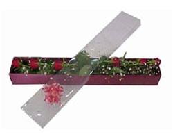 Van anneler günü çiçek yolla   6 adet kirmizi gül kutu içinde