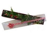 Van hediye çiçek yolla  3 adet gül.kutu yaldizlidir.