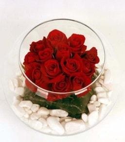 Cam fanusta 11 adet kırmızı gül  Van çiçek gönderme