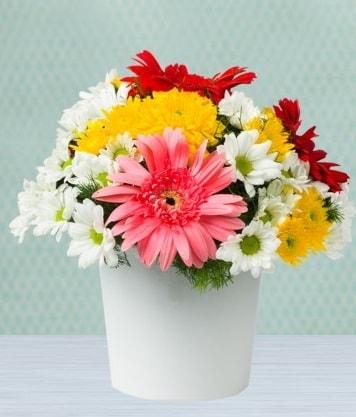 Seramik Vazoda Gelbera ve Papatya  Van çiçek gönderme