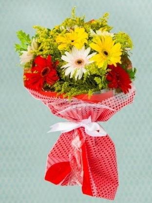 Karışık Gelbera Buketi  Van çiçek siparişi sitesi