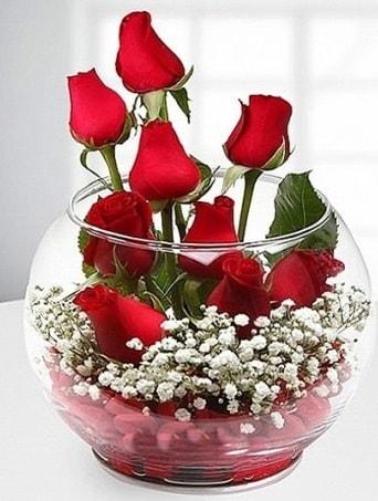 Kırmızı Mutluluk fanusta 9 kırmızı gül  Van çiçek siparişi sitesi