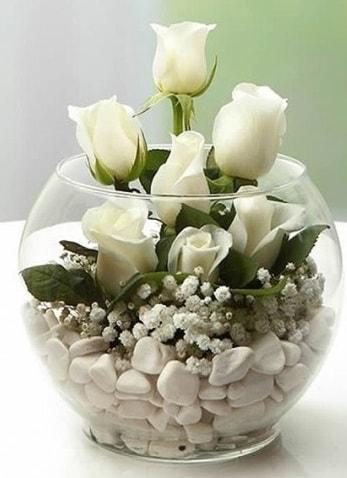 Beyaz Mutluluk 9 beyaz gül fanusta  Van çiçek siparişi sitesi