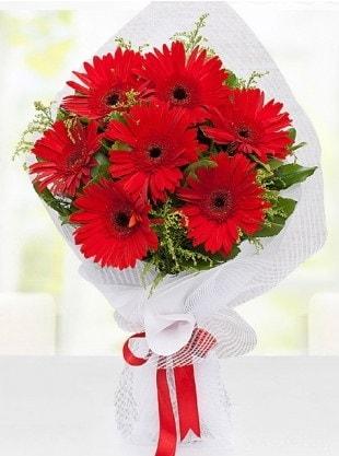 Kırmızı Gelbera Buketi  Van internetten çiçek siparişi