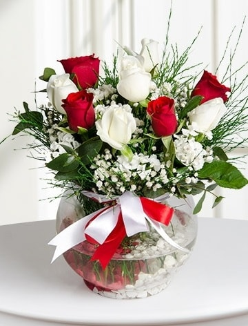 Aşk Küresi  5 beyaz 5 kırmızı gül fanusta  Van internetten çiçek satışı