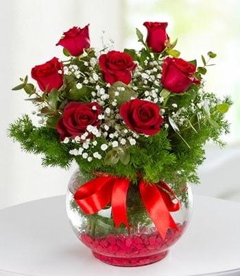 fanus Vazoda 7 Gül  Van çiçek , çiçekçi , çiçekçilik