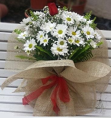 Papatya 1 adet kırmızı gül buketi  Van çiçekçiler
