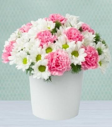 Seramik vazoda papatya ve kır çiçekleri  Van çiçek siparişi sitesi