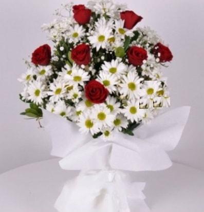 7 adet kırmızı gül ve papatyalar krizantem  Van internetten çiçek satışı
