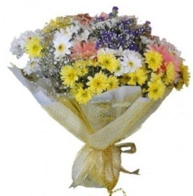 Karışık mevsim çiçeği  Van çiçek satışı