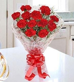 12 adet kırmızı karanfil buketi  Van İnternetten çiçek siparişi