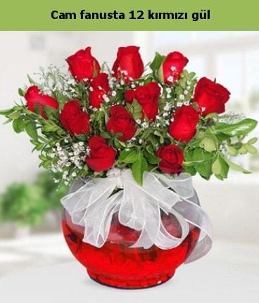 Cam içerisinde 12 adet kırmızı gül  Van internetten çiçek satışı