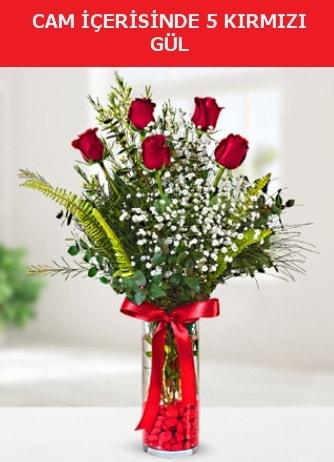 Cam içerisinde 5 adet kırmızı gül  Van çiçek siparişi sitesi