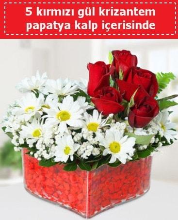 mika kalp içerisinde 5 kırmızı gül papatya  Van çiçek gönderme
