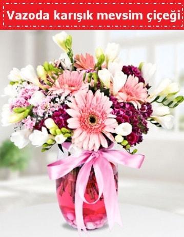 Vazoda karışık mevsim çiçeği  Van çiçek , çiçekçi , çiçekçilik