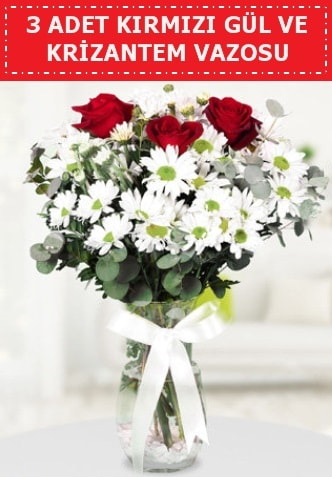 3 kırmızı gül ve camda krizantem çiçekleri  Van çiçek gönderme