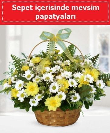 Sepet içerisinde mevsim papatyaları  Van ucuz çiçek gönder