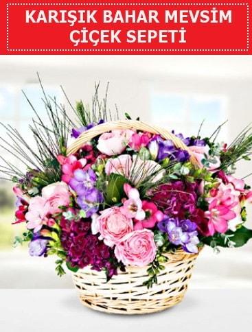 Karışık mevsim bahar çiçekleri  Van ucuz çiçek gönder