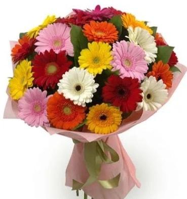 Karışık büyük boy gerbera çiçek buketi  Van çiçek satışı